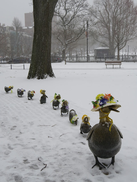 Venture & Roam: Make Way for Ducklings Statue covered in snow and wearing spring hats in the Boston Public Garden