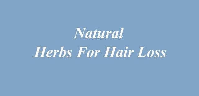 Natural Herbs For Hair Loss