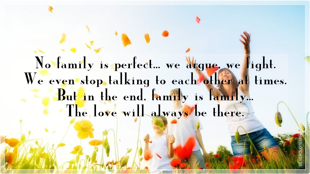 No Family Is Perfect Silver Quotes
