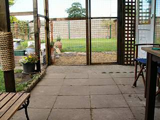 Patio in the Cat Run
