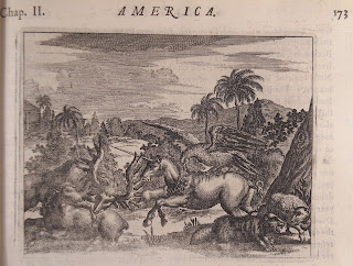 A detailed illustration of several animals including a charging unicorn.