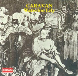 Caravan - Waterloo Lily