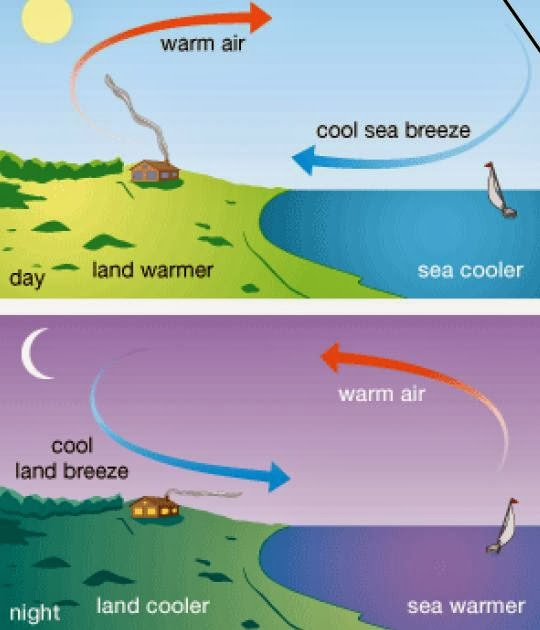 how economic climate affects the new Climate change is the earth's response to increased carbon dioxide in the atmosphere these greenhouse gases trap infrared heat from the sun that has raised the earth's average temperature 12 degrees celsius since the late 19th century climate change is nothing new.
