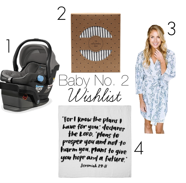 aa1e7e79310 There are a few things that I want to do differently this time around  including using a different infant carrier. Below I ve shared my top wish  list items ...