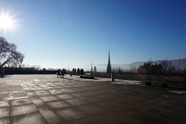 Zürichin polyterasse