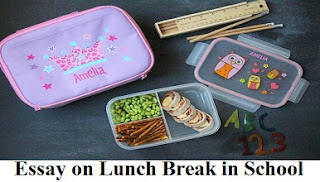 Essay on Lunch Break in School