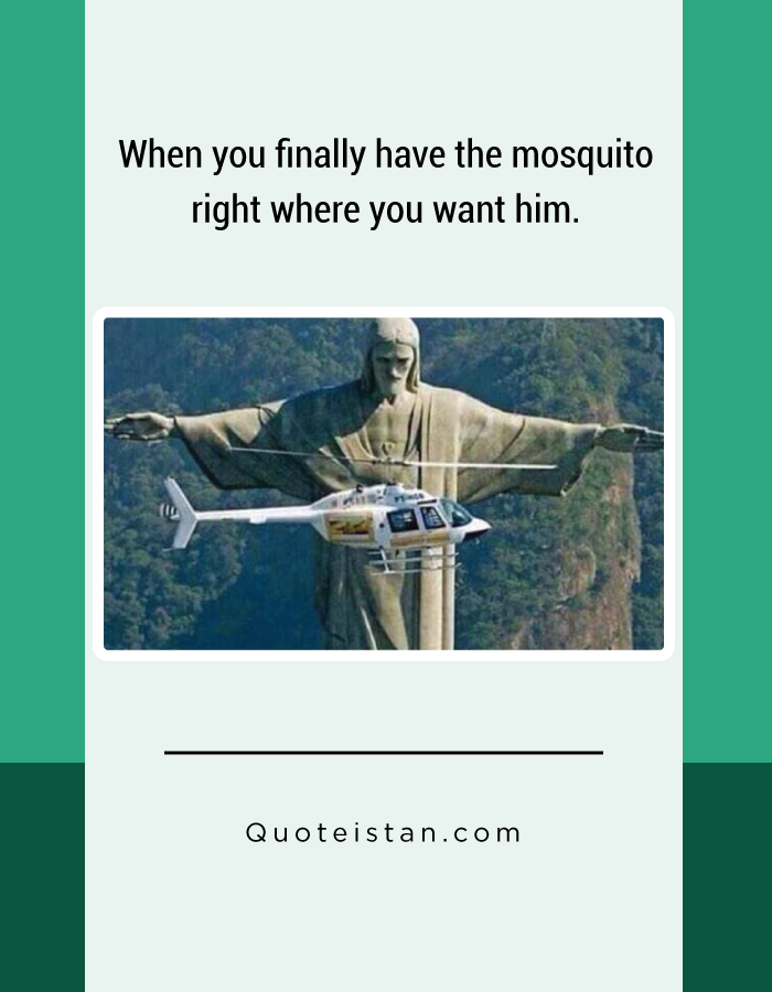 When you finally have the mosquito right where you want him.