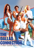 (18+) The Dallas Connection (1994) Dual Audio [Hindi-English] 720p BluRay ESubs Download
