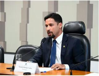 "Senador Rodrigo Cunha ouviu de especialistas que o caso de pinheiro"" tragédia, anunciada"