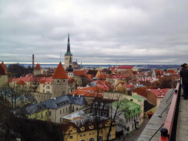 Ruokaseikkailu Tallinnassa