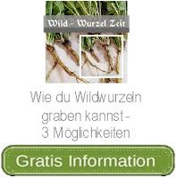 https://wegeinsich.blogspot.co.at/2017/10/wie-du-wildwurzeln-graben-kannst-und.html