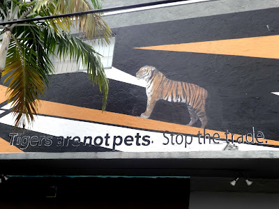 Tigers exotic animals graffiti art Wynwood Walls