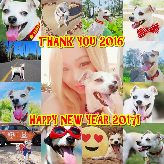 THANK YOU 2016 HAPPY NEW YEAR 2017!