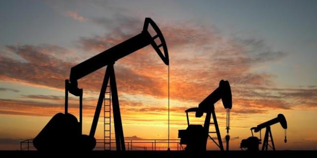 """بدء تلقى طلبات التدريب على """"الخدمات البترولية"""" مجانا بمكافأة 2300 جنيه"""