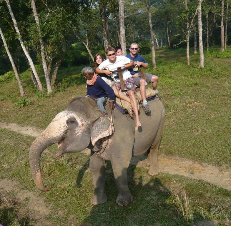Transportation by means of elephant.
