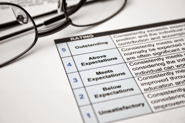 Performance Management from the Employee's Perspective