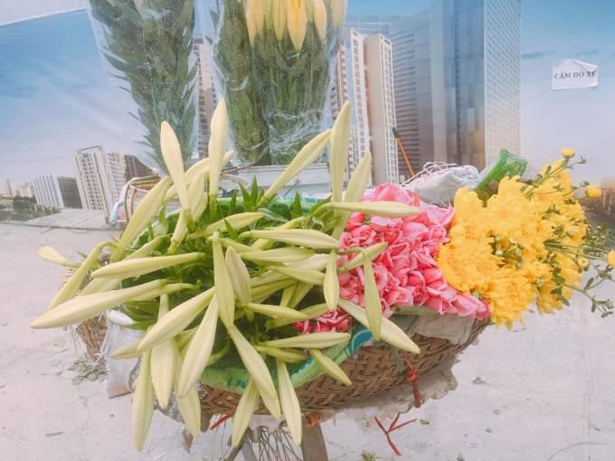 Tháng 4 về ngập phố Hà Nội với loài hoa báo hè - Ảnh 1