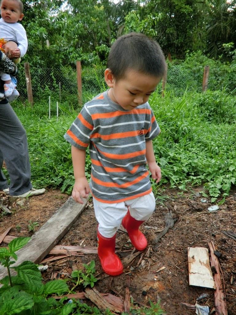 Lil' Iman in the garden