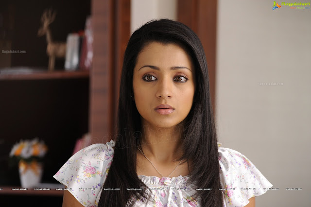 Samar 2013 Movie Poster: Trisha Krishnan - Samar Movie Wallpapers (HD)