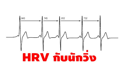 HRV กับนักวิ่ง