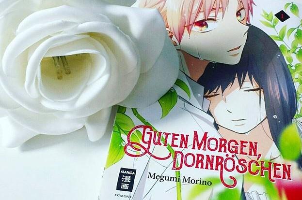 Awkward Dangos Manga Review Guten Morgen Dornröschen 01