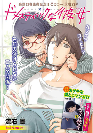 Domestic na Kanojo