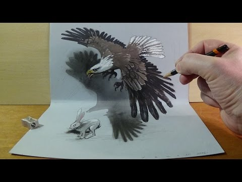 3d animal drawing in a picture frame