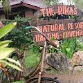 The Pikas Penginapan Nyaman di Banjarnegara