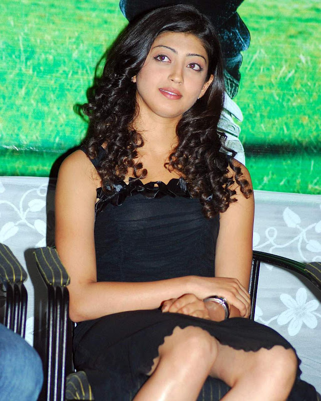 Hottest Actress Photos Saguni Heroine Pranitha Sexy Legs -2835