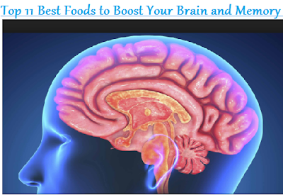 Top 11 Best Foods to Boost Your Brain and Memory