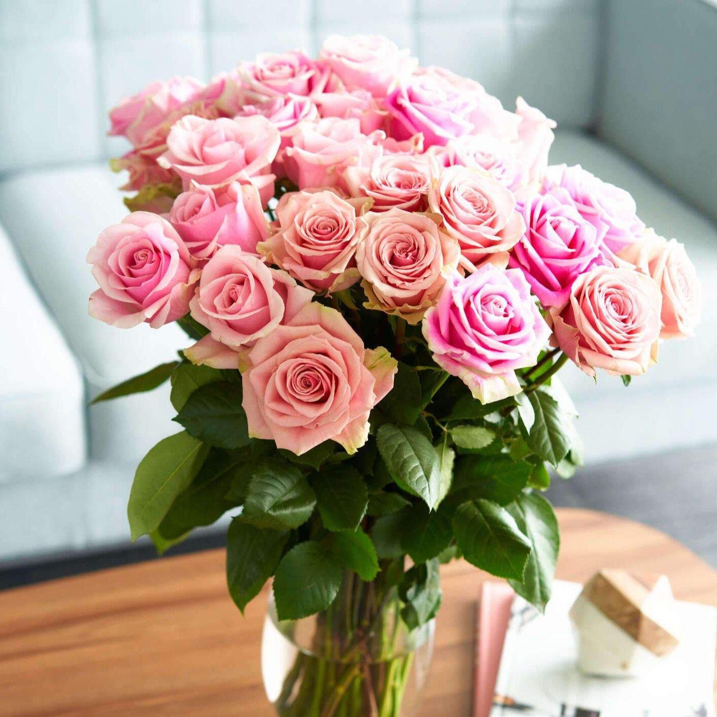Pink Bi-Color Eyecatcher Long Stem Roses