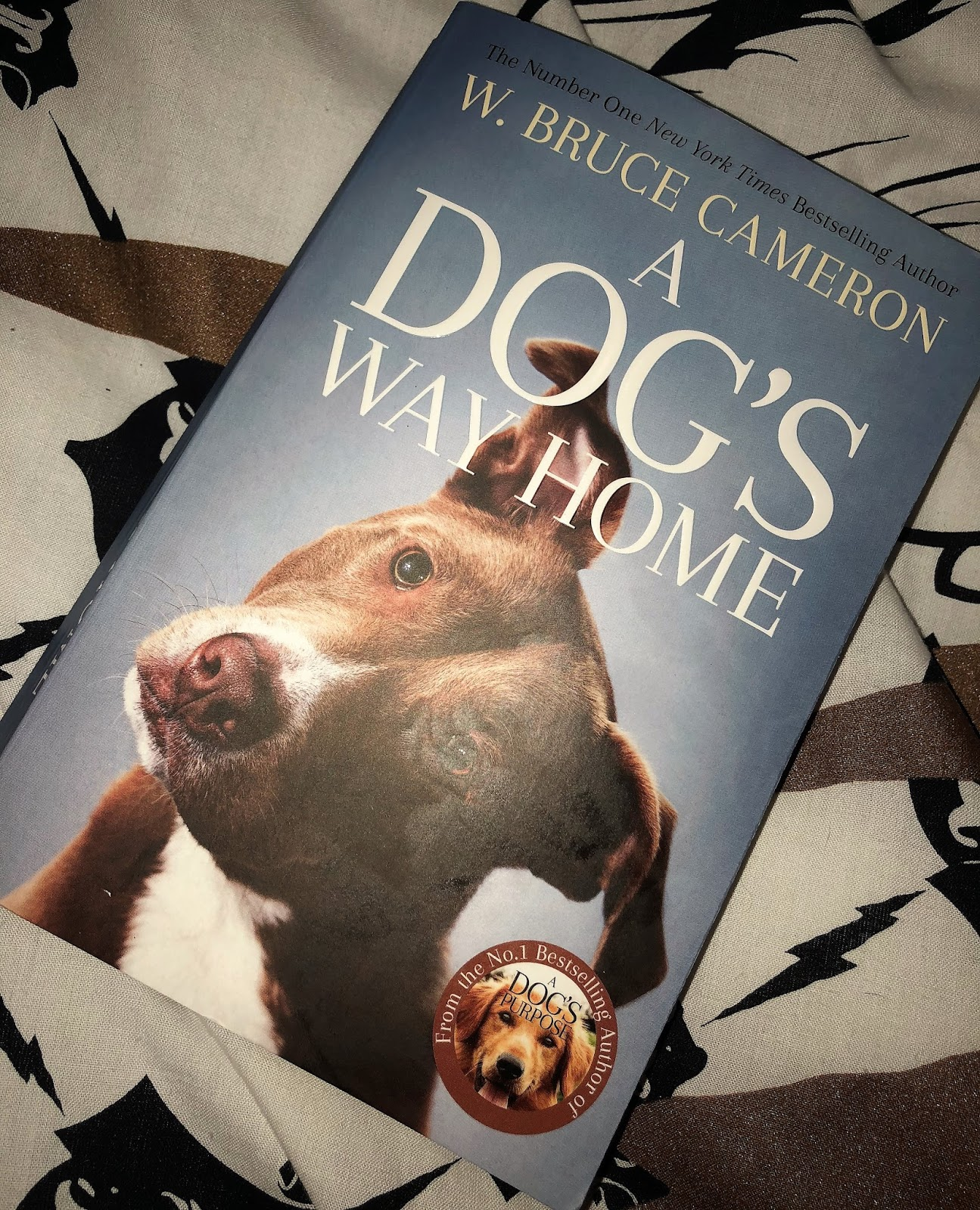 Aimee Raindrop Writes: Book Review: A Dog's Way Home by W