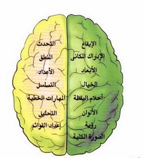 كتاب اليقظة العقلية