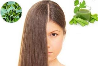 100% Alami menyuburkan dan Mengatasi Kerontokan Pada Rambut