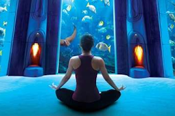 The Excitement And Relaxation Of A Massage Therapy At Atlantis Spa
