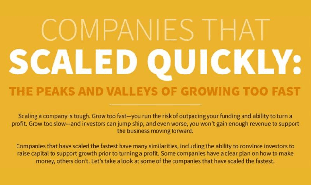 Companies That Scaled Quickly