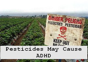 https://foreverhealthy.blogspot.com/2012/04/pesticides-may-cause-adhd-in-kids.html#more