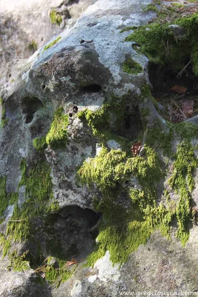 Visage de pierre, Bois Rond, Trois Pignons, (C) Greg Clouzeau