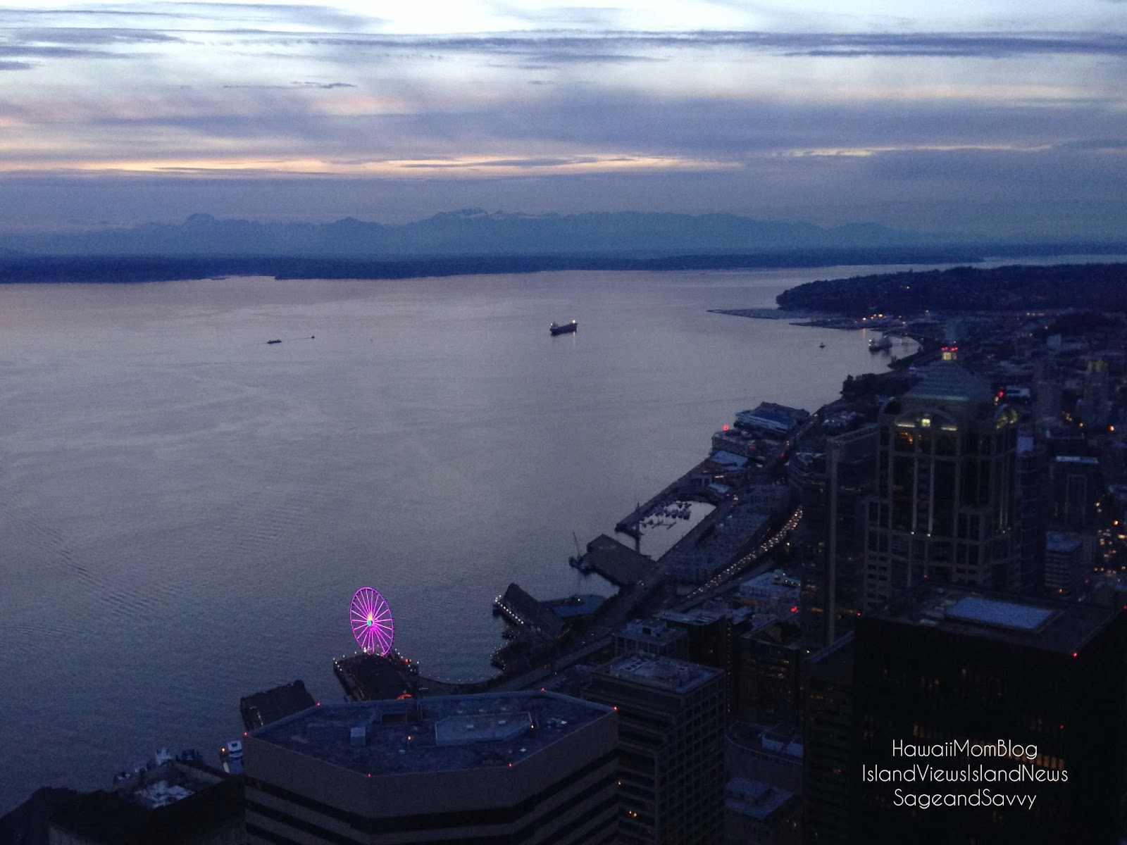 Hawaii Mom Blog: Visit Seattle - Sky View Observatory