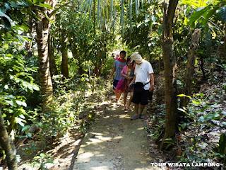 trekking ke laguna gayau