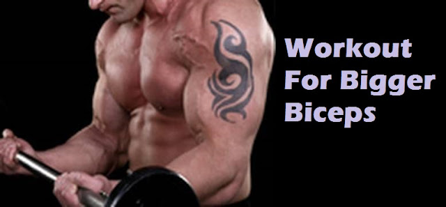 exercises to build bigger biceps
