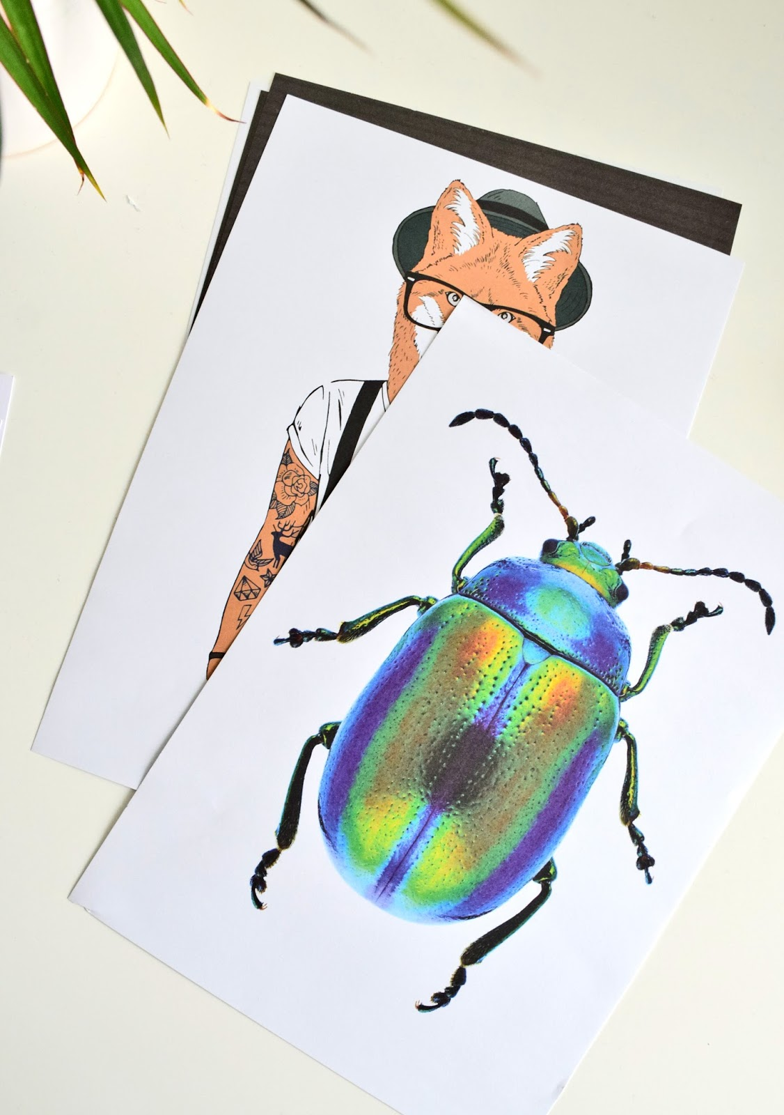 Plakaty z kolorem
