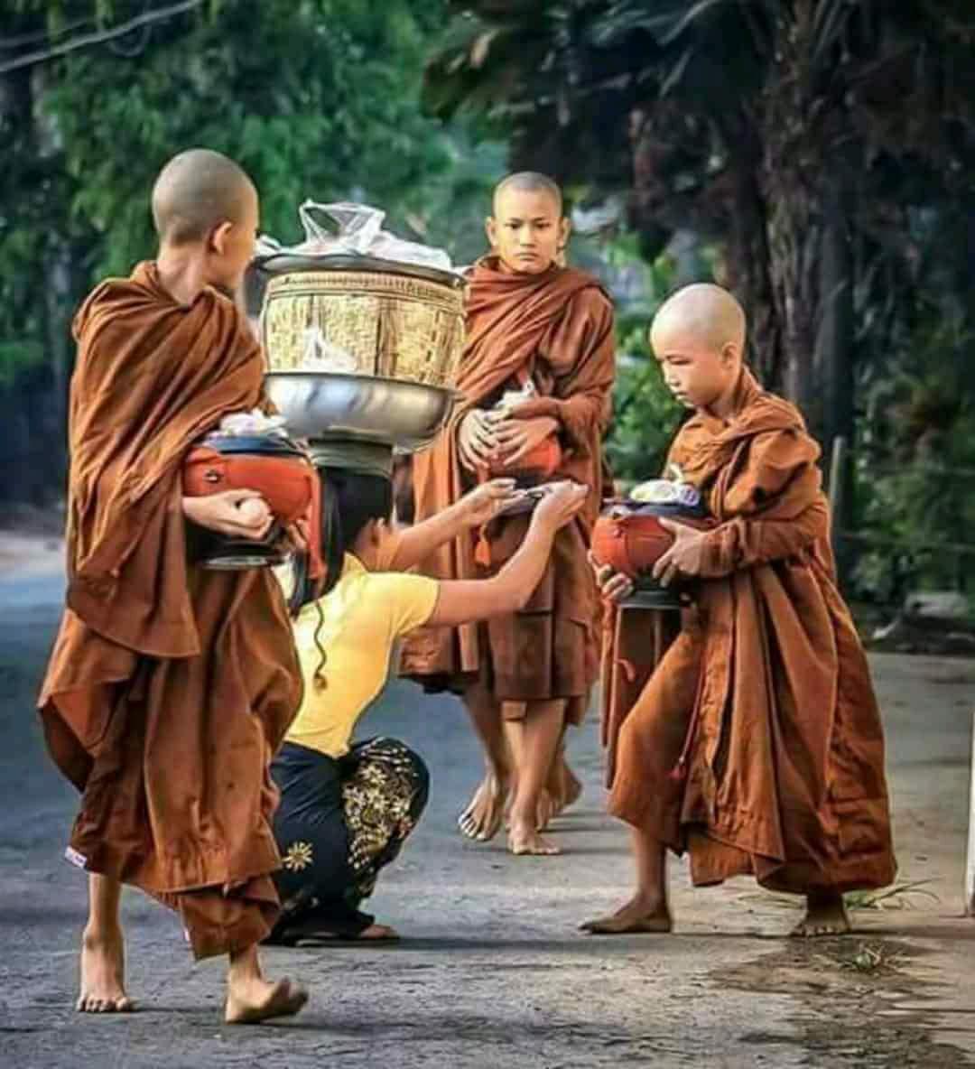 Người Cư sĩ Phật tử cần học - thực hành và chia sẻ những điều này...