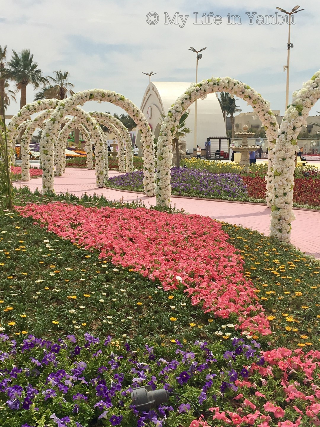 my life in yanbu!: yanbu flower festival 2017
