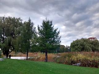 parc Jarry l'automne, ciel gris