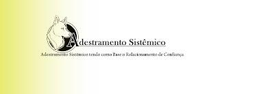 Adestramento Sistêmico em Curitiba e Região