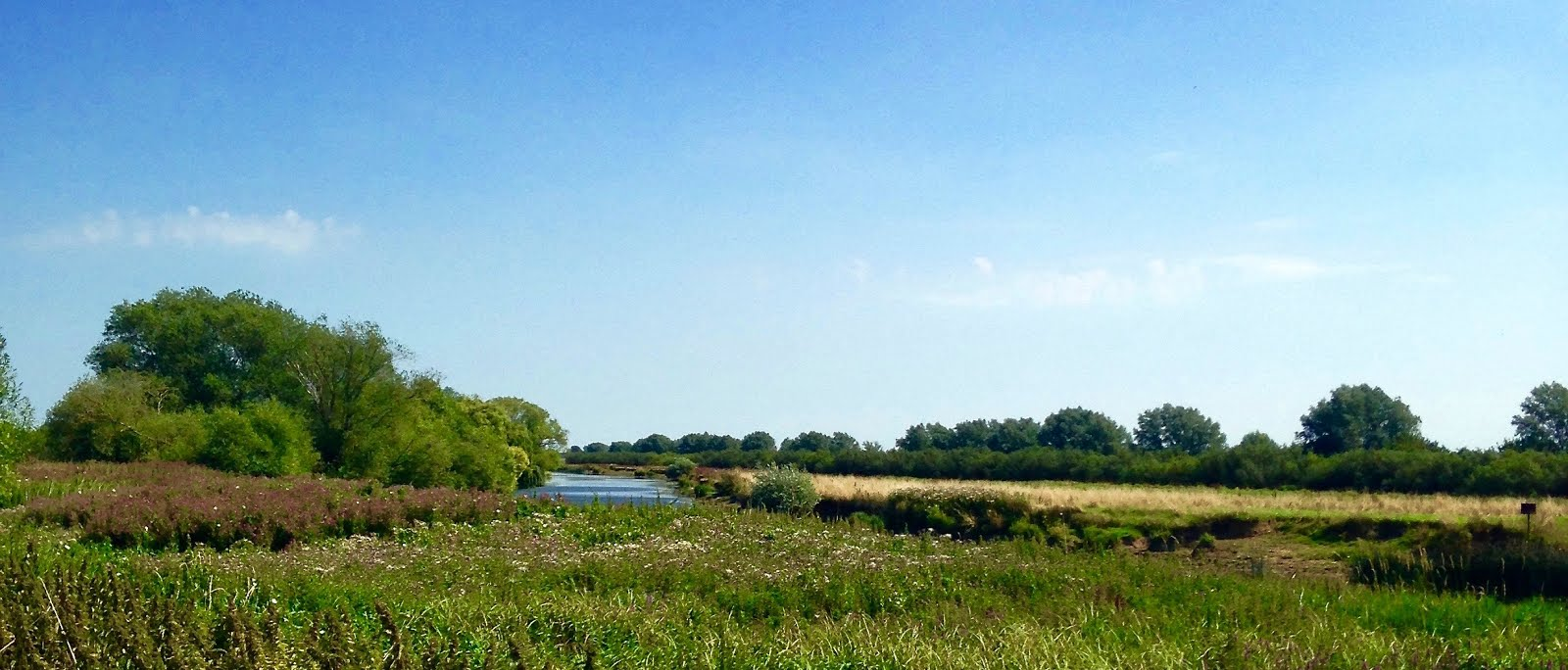 Cambridgeshire Walks Bluntisham to Earith