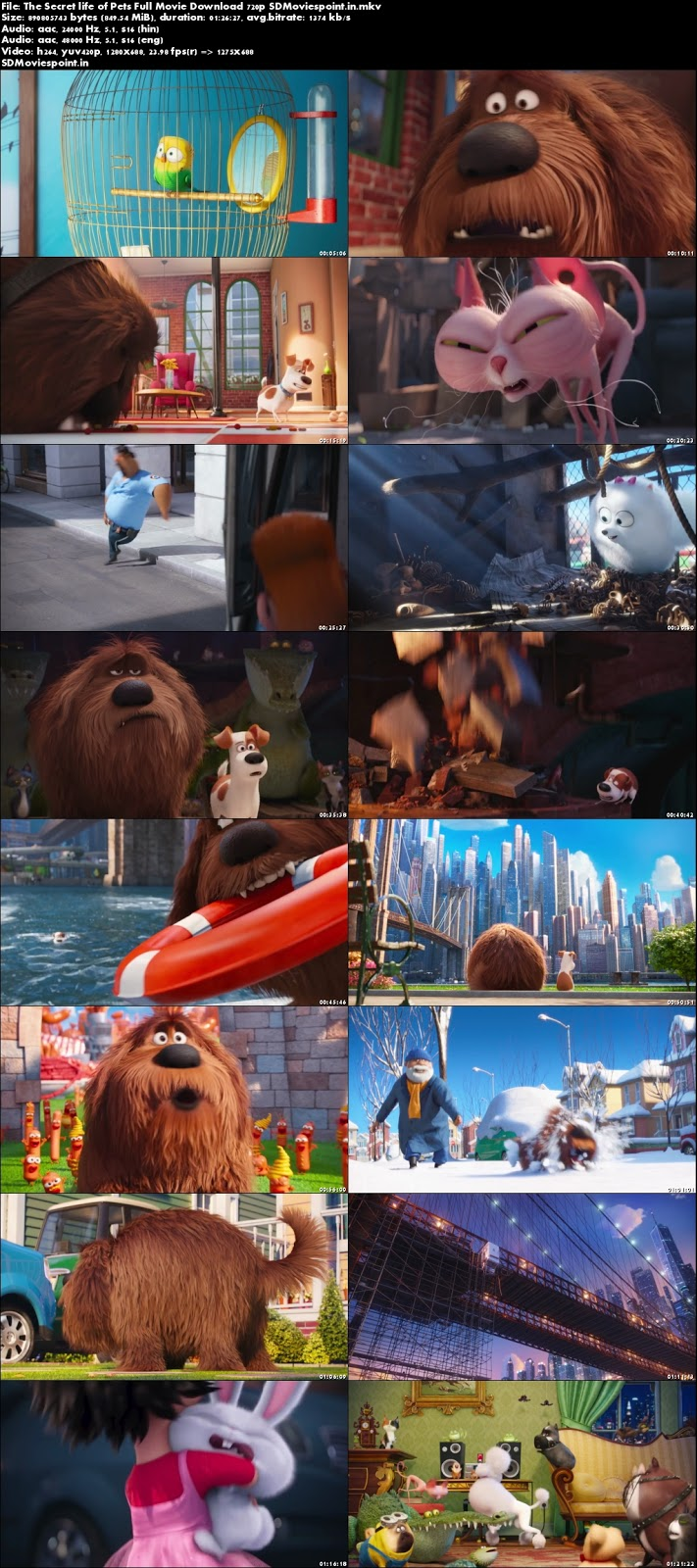 Screen Shots The Secret Life of Pets (2016) Full HD Movie Download Hindi Dubbed