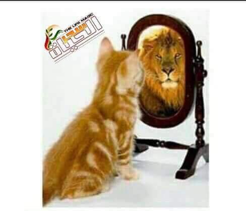 هل أنت تعرف قدر نفسك ؟