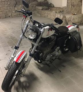 sportster 883 anniversario moto del pacciani front left angle